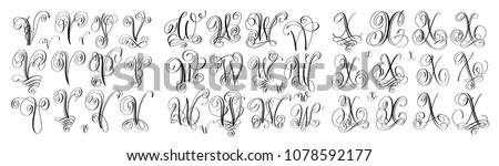 calligraphy letters set V, W and X, script font Isolated on white written with ink, vector illustration