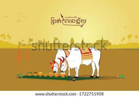 Cambodia royal ploughing ceremony golden Сток-фото ©