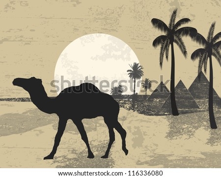 Camel and palms on grunge background of sunset in african desert, vector illustration