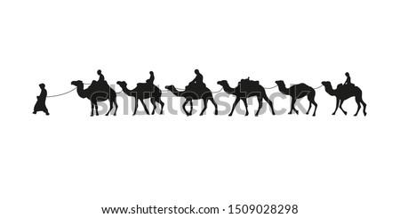 Camel caravan silhouette. Vector illustration isolated on white background. Stok fotoğraf ©