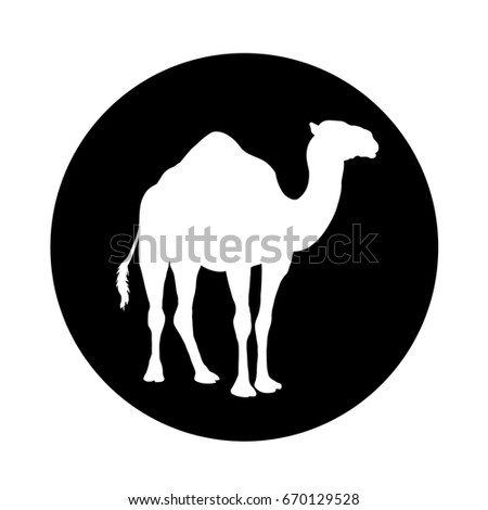 camel icon  cut in a black