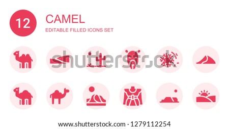 camel icon set collection of