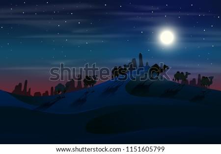 camel in desert at night