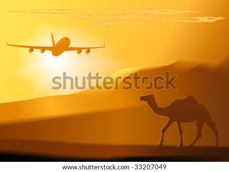 camel jet  and sunsetvector