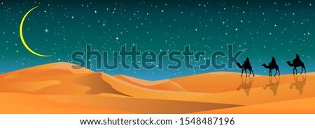 camel riders in the sand desert