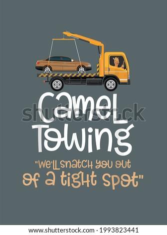 camel towing funny dank meme