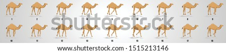 camel walk cycle animation