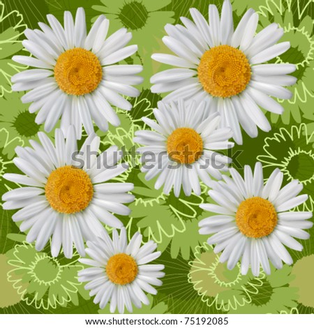 Camomile seamless pattern EPS 10