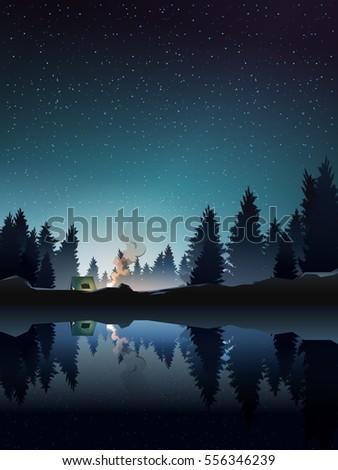 camping in pine wood near lake