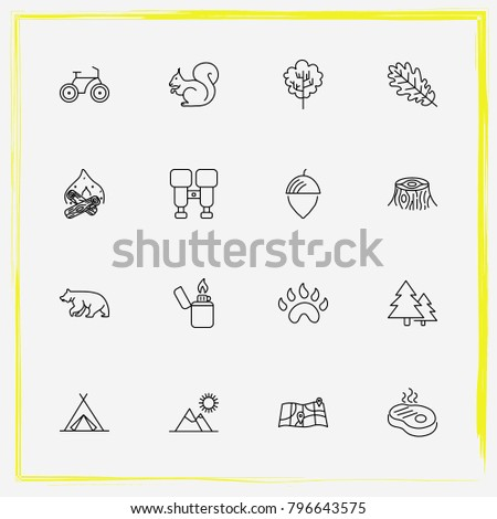 Camping line icon set map, fir-tree and squirrel