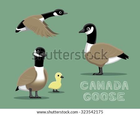 Canada Goose Cartoon Vector Illustration