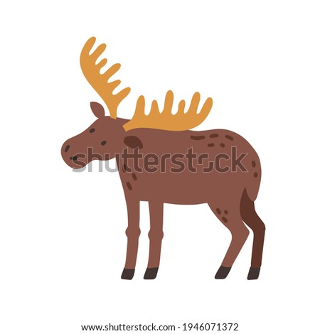 Canadian elk with horns. Scandinavian horny moose. Nordic wild animal. Colored flat vector illustration of Swedish fauna isolated on white background Stockfoto ©