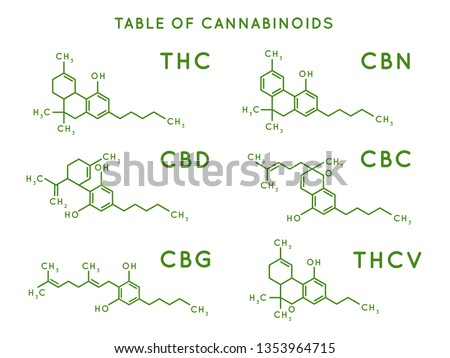 Cannabinoid structure. Cannabidiol molecular structures, THC and CBD formula. Marijuana or cannabis molecules, cannabidiol biochemistry medicinal structuring vector illustration