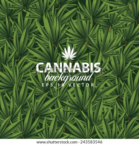 cannabis background eps 10
