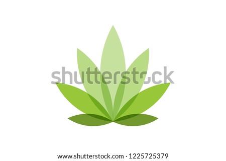 cannabis leaf logo designs