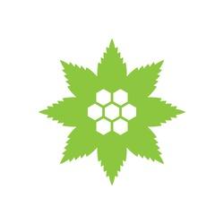 Cannabis Leaf pattern with hexagonal CBD.logo icon vector.