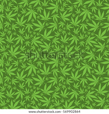 cannabis leaves on green