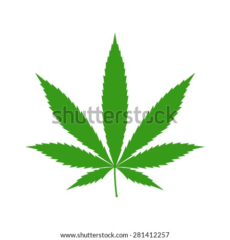 cannabis  marijuana  hemp leaf