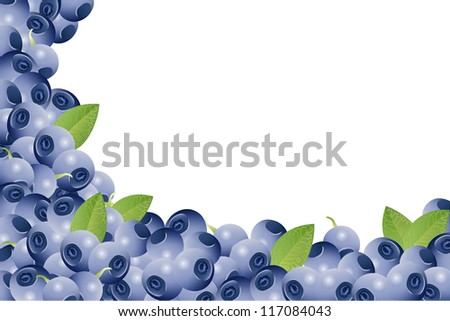 card with blueberries