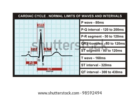 Cardiac cycle and normal levels of intervals and waves. Information for professionals. Vector illustration. - stock vector