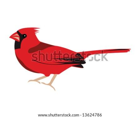 Cardinal Stock Illustrations – 6,241 Cardinal Stock Illustrations, Vectors  & Clipart - Dreamstime