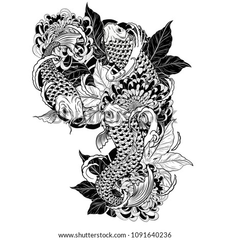 Carp fish and chrysanthemum tattoo by hand drawing.Tattoo art highly detailed in line art style.