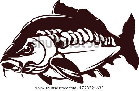 Carp Fishing Logo. Great Carp fishing vector to use as your fishing activity.