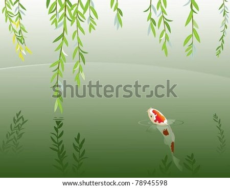 Carp in shady pond