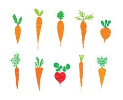 carrot vector