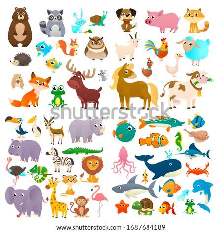 Cartoon animals. Big collection sea animals, wild animals, woodland animals.