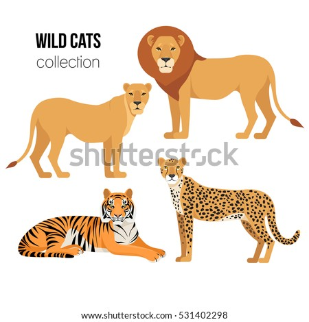 Cartoon animals: lion, lioness, cheetah, tiger. The drawn set of wild cats. Collection of stylized predators in a flat style. Vector illustration