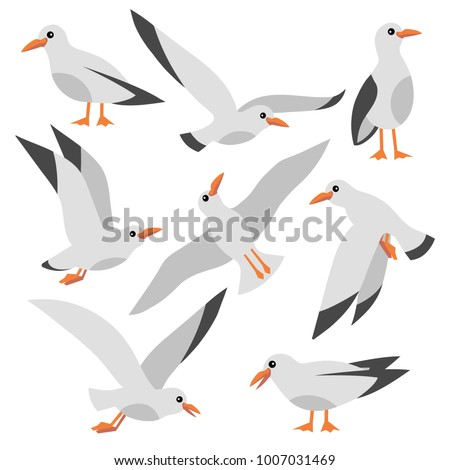 Cartoon atlantic seabird, seagulls flying on isolated white background. Sea, Ocean, Gull, bird in a vector flat style