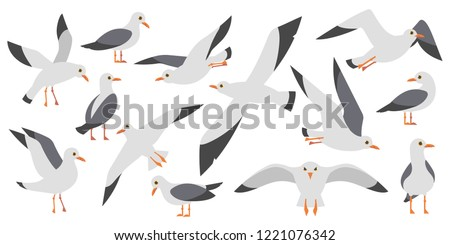 Cartoon atlantic seabird, seagulls flying on isolated white background. Sea, Ocean, Gull, bird set in a vector flat style. Big oceangull pack