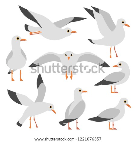 Cartoon atlantic seabird, seagulls flying on isolated white background. Sea, Ocean, Gull, bird set in a vector flat style