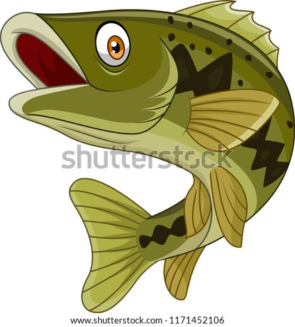 Cartoon bass fish isolated on white background