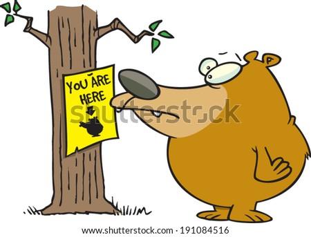 cartoon bear looking at a you