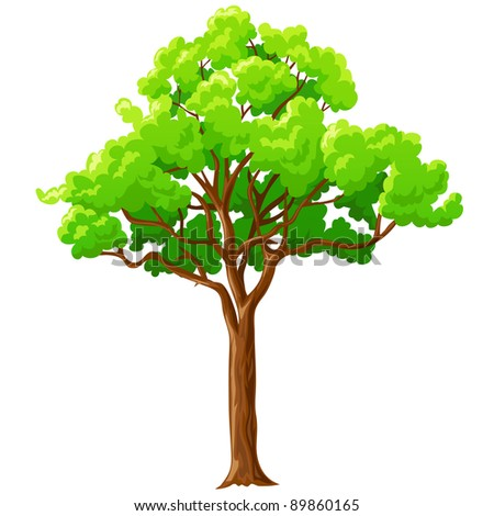 Tree Cartoon Background Cartoon Big Green Tree With