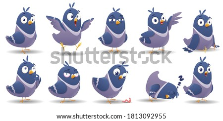 Cartoon bird character set. Icon set of pigeon bird with different poses and emotions isolated on white background. Illustration of color bird animal. Vector illustration