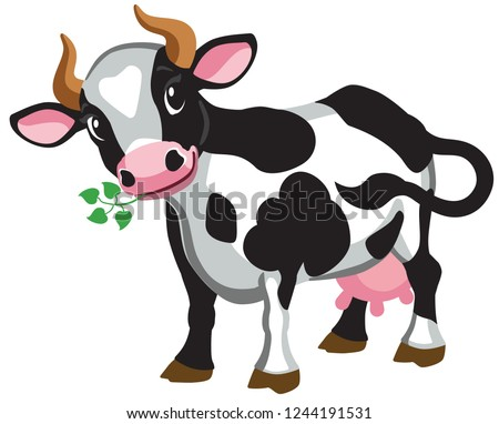 cartoon black spotted cow . Isolated vector illustration