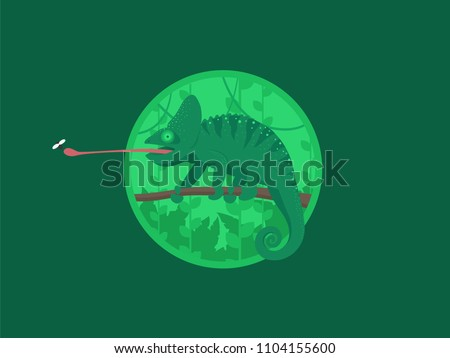 cartoon chameleon green jungle