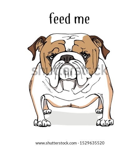 cartoon character funny bulldog