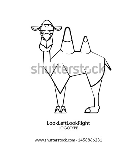 Cartoon character of an animal - a mammal. Funny serious camel seriously stands and looks around. Conceptual - Look left look right - Vector