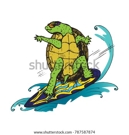 cartoon character of turtle in