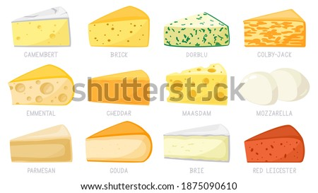 Cartoon cheese types. Cheese triangles, cheddar, brie, mozzarella, parmesan, camembert and brick. Tasty cheese vector illustration set. Parmesan and mozzarella, cheddar cheese triangle
