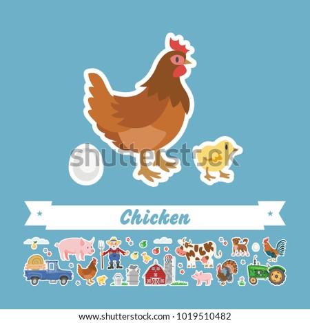 cartoon chicken vector flat