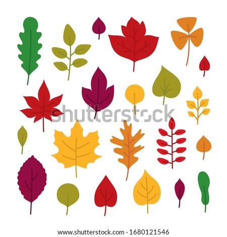 cartoon color leaves element