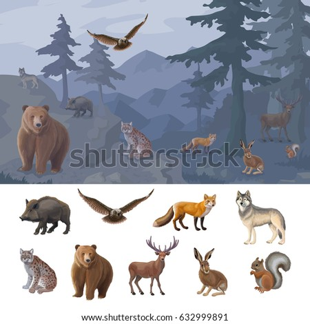 cartoon colorful forest animals