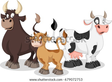 Cartoon cow, calf and bull. Cow family.