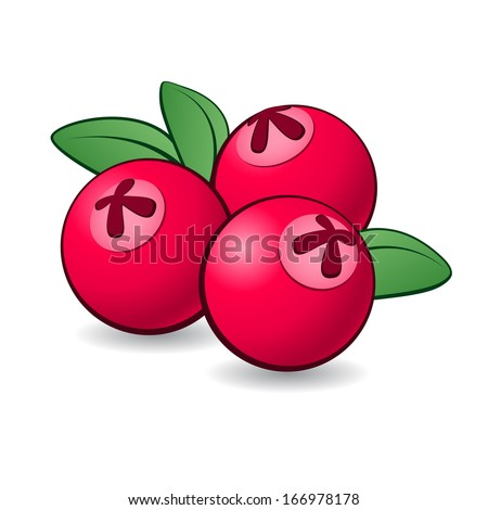 Cartoon cranberry with green leaves on white background.