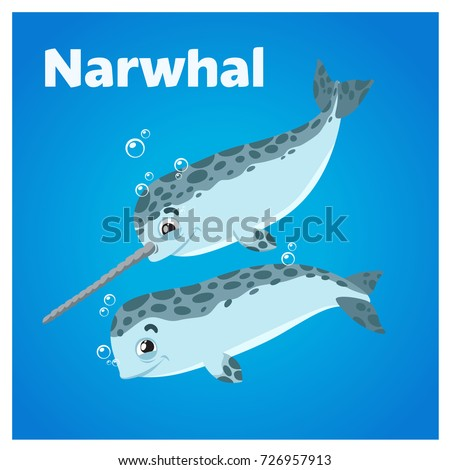 cartoon cute couple of narwhals